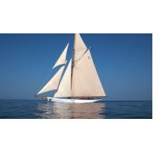 私人游艇 (Private yachts)